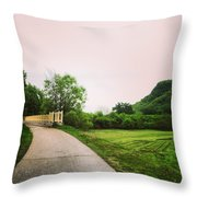 St. Marys Bridge Throw Pillow