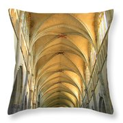 St. Maurice Cathedral In Vienne Throw Pillow