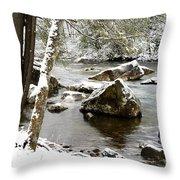 St Patricks Day Cranberry River Throw Pillow