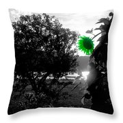 St. Patrick's Day On The Hudson Throw Pillow