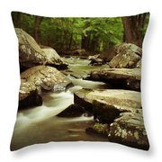 St. Peters Stream Throw Pillow
