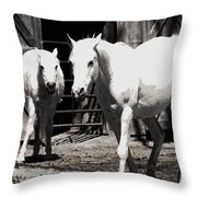 Stable Pair Throw Pillow
