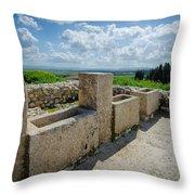 Stables At Tel Meggido Throw Pillow