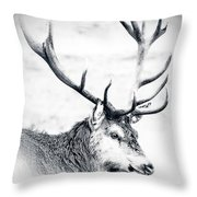 Stag In Black And White Throw Pillow