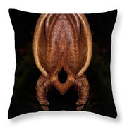Stage Of Development Throw Pillow