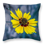 Stages Of Life Throw Pillow