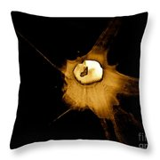 Staggered Instantaneous Sight Throw Pillow