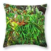 Staghorn Fresco Throw Pillow