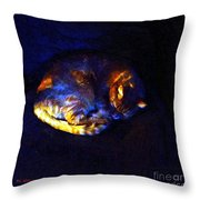 Stained Glass Snoozer Throw Pillow