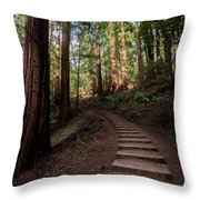 Stairs Into The Woods Throw Pillow