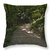 Stairway In Nature Throw Pillow