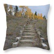 Stairway To Autumn Throw Pillow