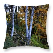 Stairway To Fall Throw Pillow