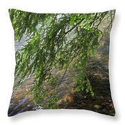 Stalking Trout Throw Pillow
