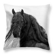Stallion Beauty Throw Pillow