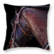 Stallion Throw Pillow