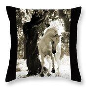 Stallion Dances In Sepia Throw Pillow