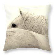 Stallion In Sepia Throw Pillow
