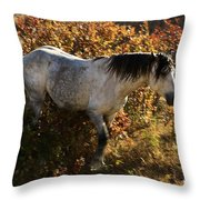 Stallion Of The Badlands Throw Pillow