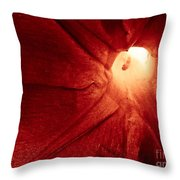 Burgundy Petal Throw Pillow