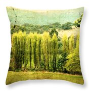 Stamped By History Throw Pillow