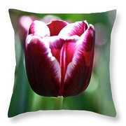 Stand And Shout Throw Pillow