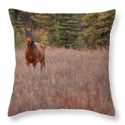 Stand Free Throw Pillow