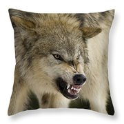 Stand Off Throw Pillow