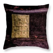 Stand Or Not Stand Throw Pillow by Bob Orsillo