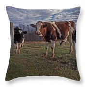 Stand Yer Ground Throw Pillow by Skip Willits