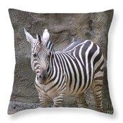 Standalone Zebra Throw Pillow