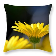 Standing Above The Rest Throw Pillow