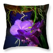 Standing Alone In Beauty Throw Pillow