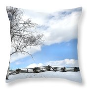 Standing Alone Throw Pillow by Todd Hostetter