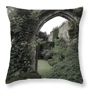 Standing Arch Throw Pillow