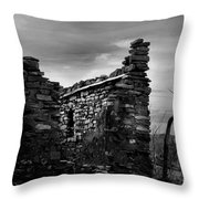 Standing In Silence Throw Pillow