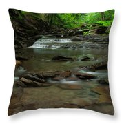 Standing In The Stream Throw Pillow