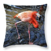 Standing On Long Legs Throw Pillow