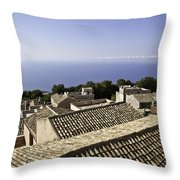 Standing On Top Of The World Throw Pillow