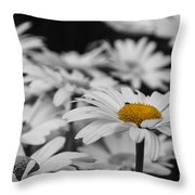 Standing Out From The Crowd 1 Throw Pillow