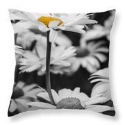 Standing Out From The Crowd 2 Throw Pillow
