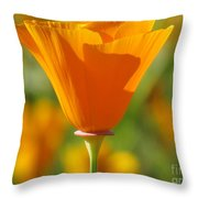 Standing Solo Throw Pillow