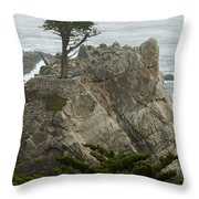 Standing Tall On The Rock Throw Pillow