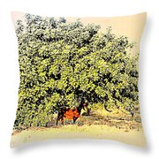 I'm Standing In The Chilly Shadow Under My Tree Throw Pillow