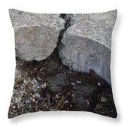 Standoff Throw Pillow