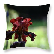 Standout Stand Tall Stand Proud Throw Pillow