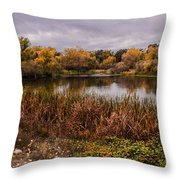 Stanislaus Watershed Throw Pillow