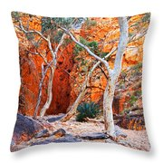 Stanley Chasm Throw Pillow