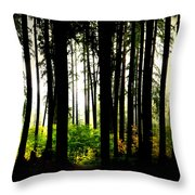 Stanley Park Triptych Right Throw Pillow