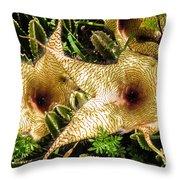 Stapelia Throw Pillow